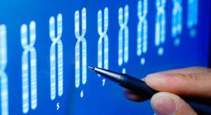 control genético