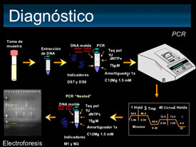 diagnostico vph